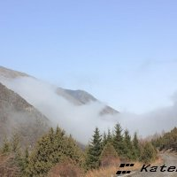 туман приближается... :: KateRina K