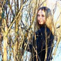 весна.... :: Юлия Пенькова