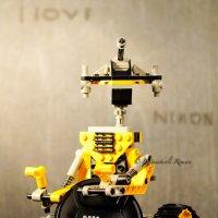 Я люблю Nikon :: роман батуашвили