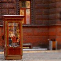Книжный шкаф :: Олег Ровда