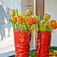 В ожидании весны :: Олег Ровда