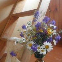 flowers :: полина кама