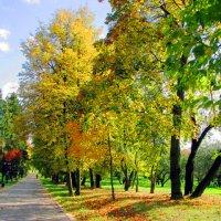 Осень в парке :: Николай Климович