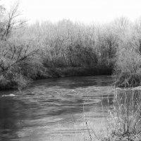 Весенние воды :: Александр Табаков
