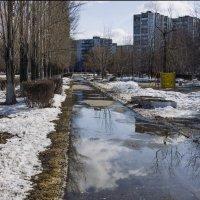 Весна)) :: Александр Барышев