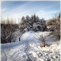Зима уходящая... :: Anatolij Maniuto