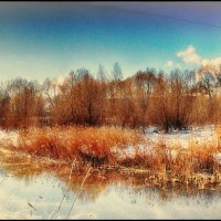 Река Сходня :: Антон Богданов