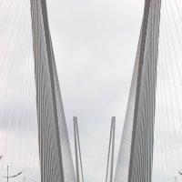 мост :: Сергей Компаниец