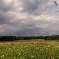 Русское поле :: Александр Иванов