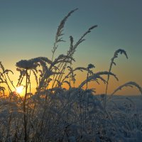 ...на закате... :: Андрей Гр