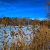 зимний март :: Константин Сегеда