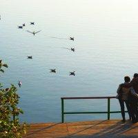 На озере :: Александр Садовский