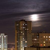 Ночной город :: Алексей Митин