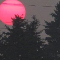 Закат над Тасеевом :: Виктория Большагина