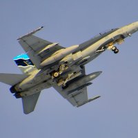 CF-18 Hornet, заходит на посадку. :: Сергей Бушуев