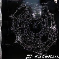 Паутиа :: KateRina K
