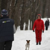 служба безопасности :: Pavel Stolyar