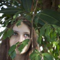 Мир спокойствия :: Таня Лоцманова