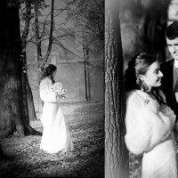 Свадьба :: Геннадий Степаненков