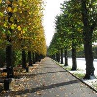 Кому осень а кому жалко покинуть лето! :: imants_leopolds žīgurs