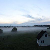 Туман наползает :: Ольга Шмырева