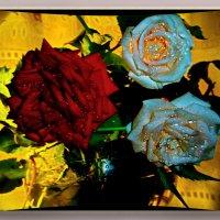Атласных лепестков медовый вкус Черпаю в аромате чайной розы.Вот и розы распустились!!!!ЛЕТОО!! :: Людмила Богданова (Скачко)