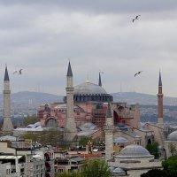 Стамбул.Собор Святой Софии. :: Галина Кучерина