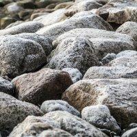 Камни :: shvlad