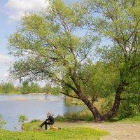 Весна в Лосином острове. :: Ирина Нафаня