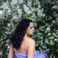 Весна :: Леся Схоменко