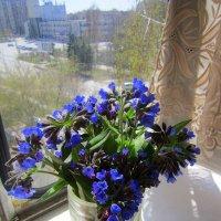 Весенний букетик . :: Мила Бовкун