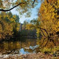 Осенний пейзаж :: Денис Масленников
