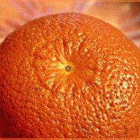 Апельсин :: Лидия (naum.lidiya)