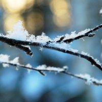 Зимняя сказка 4 :: Николай Варламов