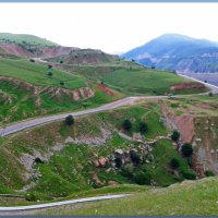 Родные просторы......дорога  ведущая в горы. :: Людмила Богданова (Скачко)