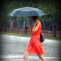 Летний дождь :: Андрей Заломленков