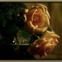 Глаза заметили случайно цветенье солнц в чужом дворе. :: Людмила Богданова (Скачко)