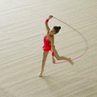 гимнастика :: Roman Demidov
