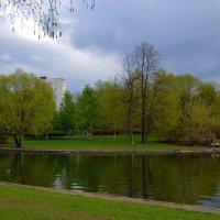 Весна :: Анатолий Цыганок