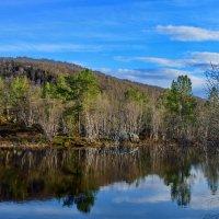 Заполярная весна. :: kolin marsh