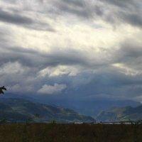 ветер :: M Marikfoto