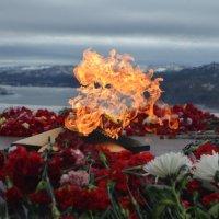 Вечный огонь у подножия памятника Алеша в г. Мурманск :: Lera Morozova