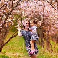 Один раз в год сады цветут... :: Александра Авраменко