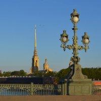 На Троицком мосту :: Наталья Левина