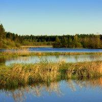 Река Аять :: Нэля Лысенко