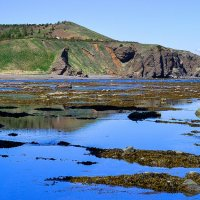 Бухта Тихая, остров Сахалин. :: Виталий Курин