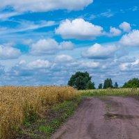 Под голубыми небесами... :: Юрий Морозов