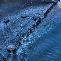water :: Юлия Денискина