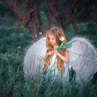 Когда ангелы  растут ..... :: Евгения Малютина