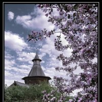 Весна! :: Nikanor